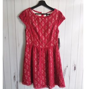Nwt Kensie Lace Fit and Flair Dress